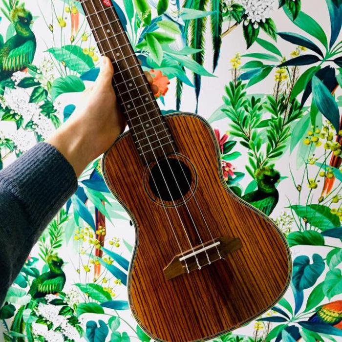Akademia Gitary