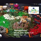 Zajęcia dla dzieci Sensoplatyka® godz. 10:30 w Warszawie